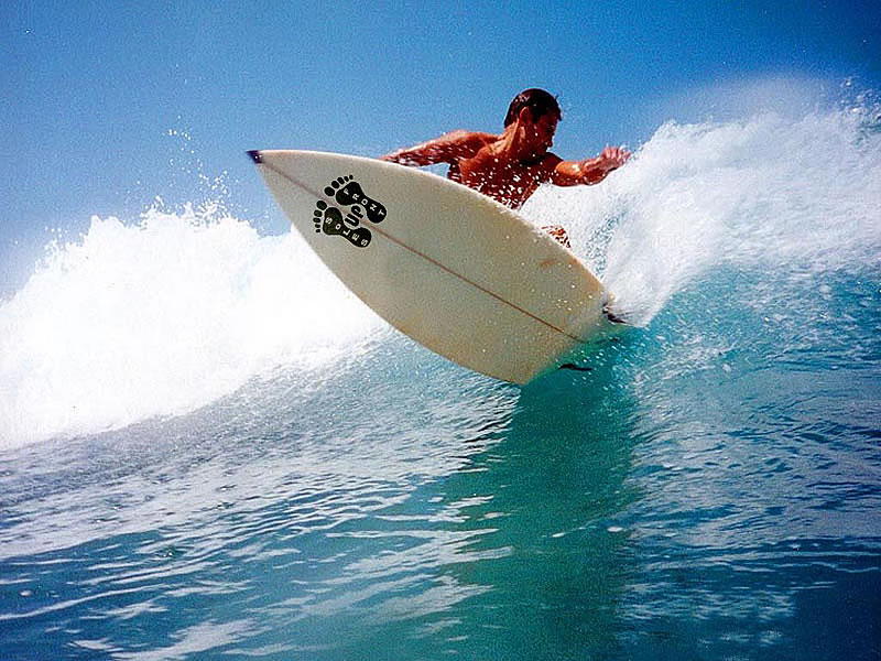Other activities: surf, skydive, sail, island tours | Honolulu ...